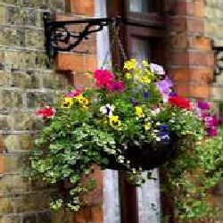 If Not, Use A Half Basket Or Hanging Planter That Will Attach Directly  Against The Outside Wall. Place One To The Side Of The Door Where It Opens,  ...