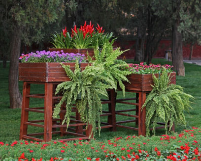 If You Have A Large Area That Want To Break Up With Either Added Flowering Or Foliage Plants Lift Two Three Containers Above The Garden Bed And
